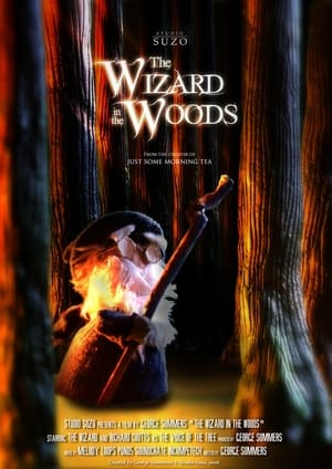 The Wizard in the Woods