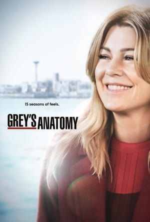 Grey's Anatomy 15ª Temporada Torrent, Download, movie, filme, poster