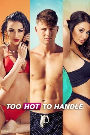 Too Hot to Handle cover