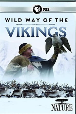 Play Wild Way of the Vikings