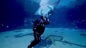The Aquarium Season 02 Episode 03 S02E03