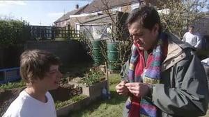 Ipswich, Suffolk - Back-Garden Archaeology