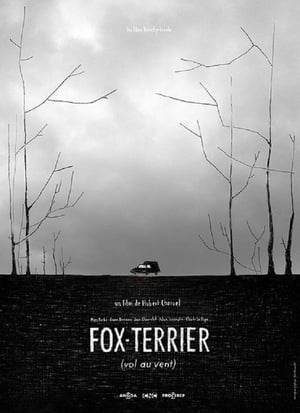 Fox-Terrier-Franc Bruneau
