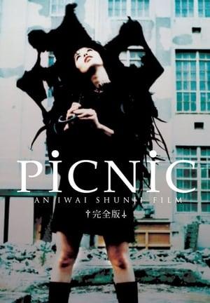 Picnic (1996)