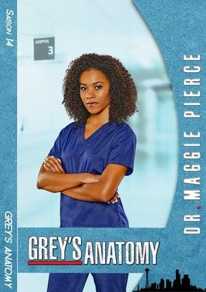 Grey's Anatomy Saison 15 Épisode 16