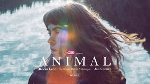 Animal [2019]