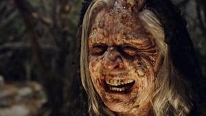 Salem Sezon 1 odcinek 13 Online S01E13