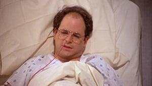 Seinfeld: 2×8