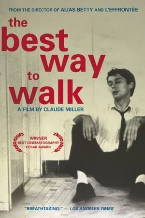 The Best Way to Walk-Azwaad Movie Database