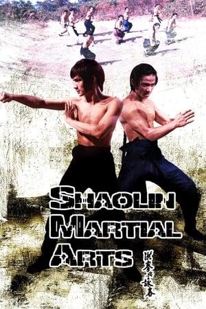 Shaolin Martial Arts