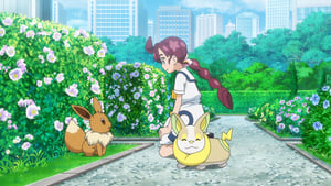 Pokémon Season 23 :Episode 49  Chloe And The Very Mysterious Eevee