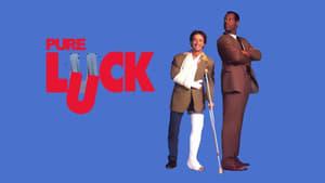 Reine Glückssache (1991)