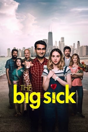 Poster The Big Sick (2017)