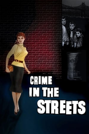 Watch Crime in the Streets Full Movie