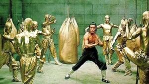 ถล่ม 18 มนุษย์ทองคำ (Return of the 18 Bronzemen)