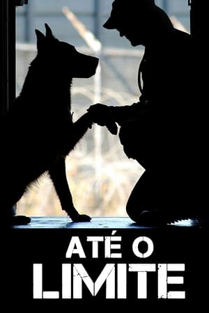 Até o Limite Torrent, Download, movie, filme, poster