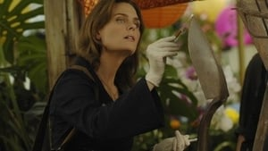 Bones - The Perfect Pieces in the Purple Pond episodio 5 online