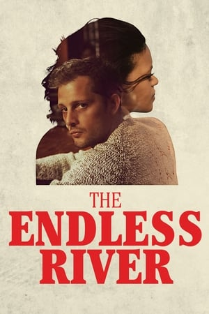 Poster The Endless River (2015)