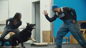 Psi terapeuta w akcji: s01e03 online