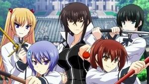 Majikoi – Oh! Samurai Girls