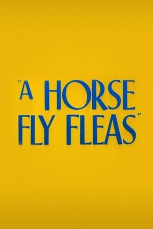 A Horse Fly Fleas