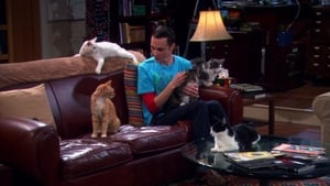The Big Bang Theory 4×3