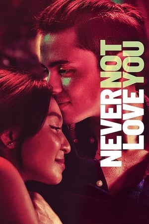 Never Not Love You poster