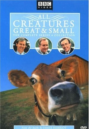All Creatures Great and Small - Season 4 - Azwaad Movie Database