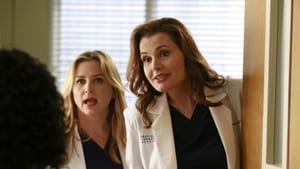 Grey's Anatomy Season 11 :Episode 8  Risk