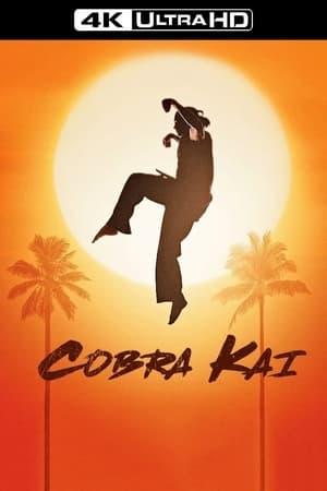poster Cobra Kai - Season 1