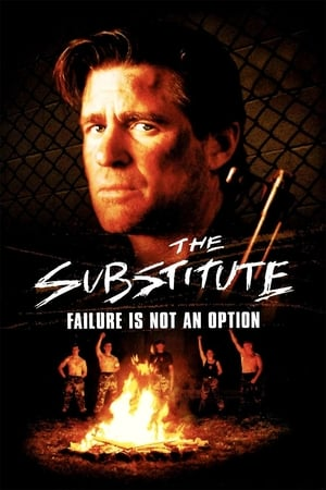 The Substitute: Failure Is Not an Option-Lori Beth Sikes
