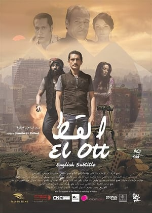 The Cat-Amr Waked