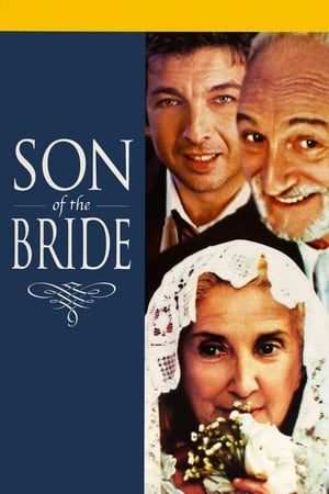 Son of the Bride streaming