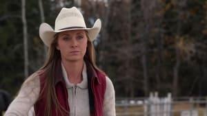 Watch S14E3 - Heartland Online