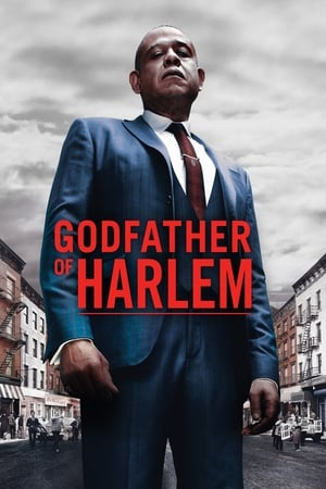 Godfather of Harlem - Poster
