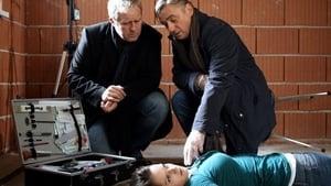 Scene of the Crime Season 41 : Episode 19