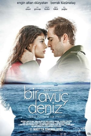 Bir Avuç Deniz (2011)