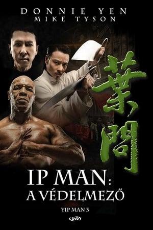 Ip Man - A védelmező