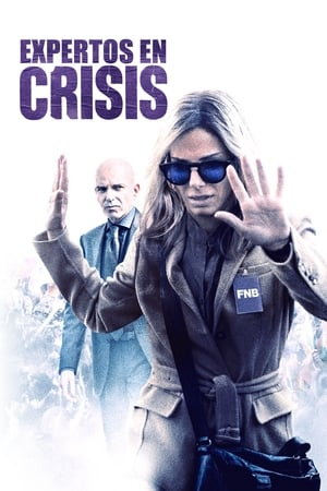 Ver Expertos en crisis (2015) Online
