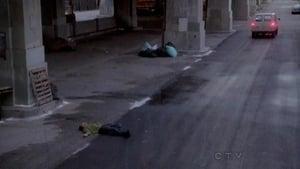 CSI: NY 9×14