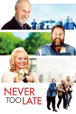 Never Too Late 2020 Full Movie