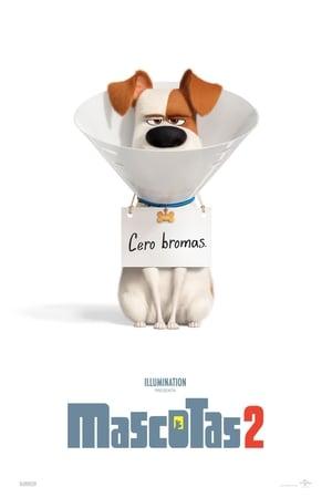 poster Mascotas 2