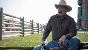 Heartland Saison 13 episode 3