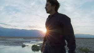 Knight of Cups [2015]