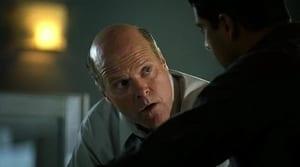Online CSI: Miami Temporada 2 Episodio 9 ver episodio online Cebo