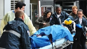 Serie HD Online Grey's Anatomy Temporada 6 Episodio 16 Un pequeño accidente perfecto