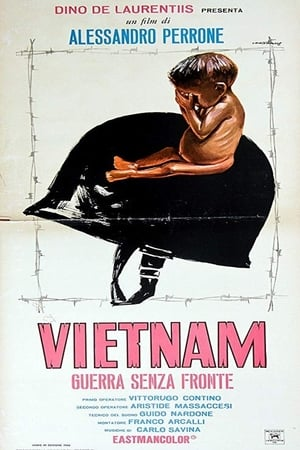 Vietnam guerra senza fronte