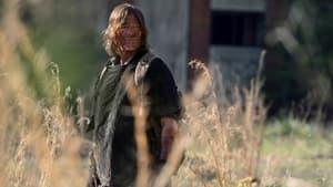 The Walking Dead: 11×4