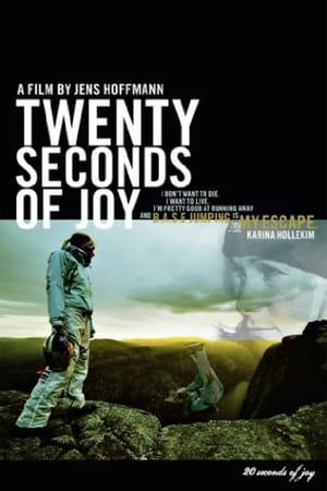 20 Seconds of Joy (2012)