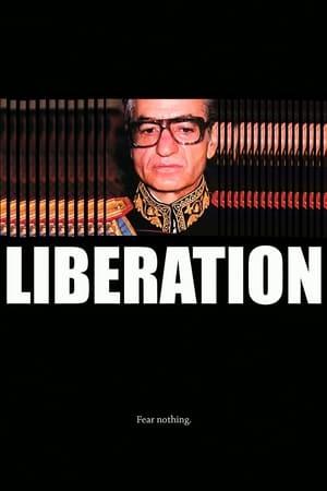 Liberation-Navid Negahban